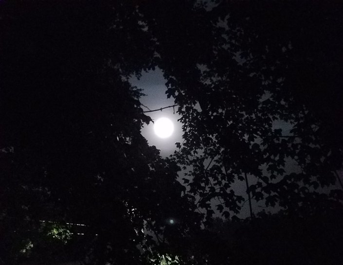 Moon Photo One