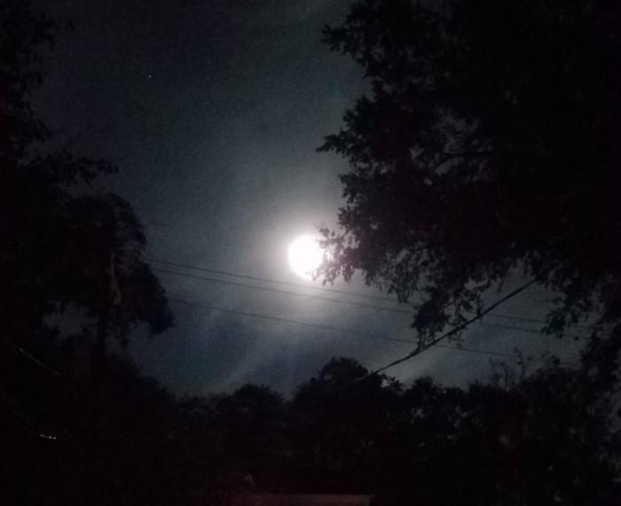 Hunter Moon Image One