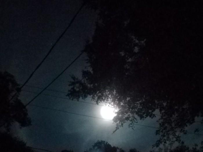 Hunter Moon Image Two