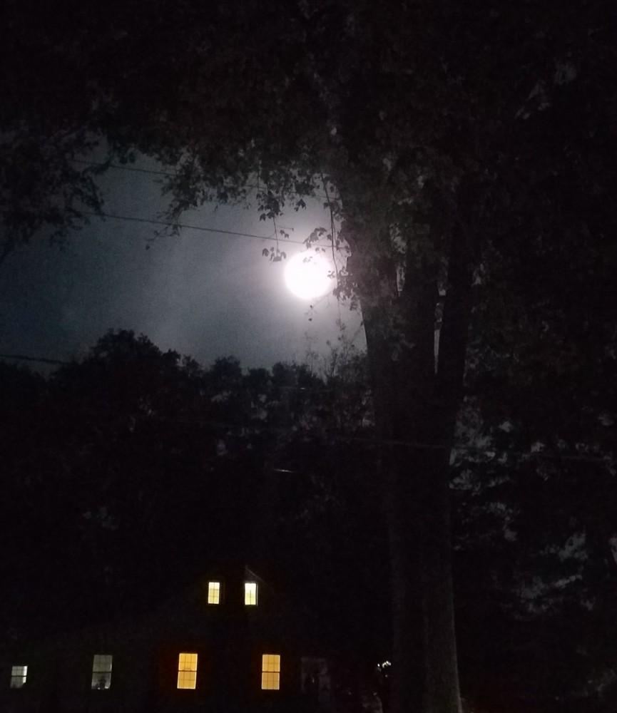 Hunter Moon Image Five