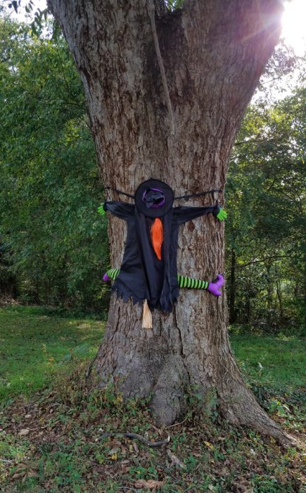 Halloween Image Eleven