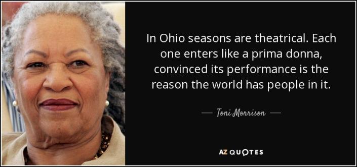 Toni Morrison Ohio Quote Image