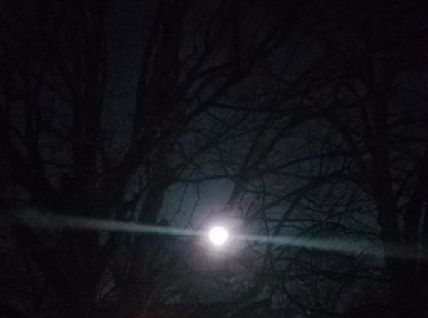 Cold Moon Image Two