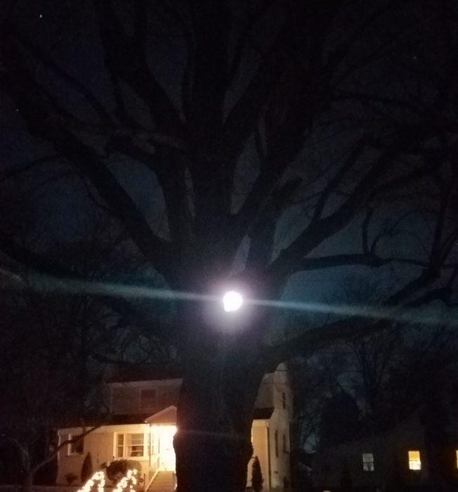 Cold Moon Image Three