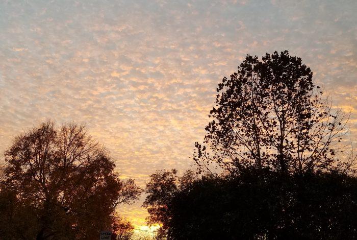 Sunset Image Three