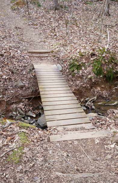 Dunnagan Trail Image Three