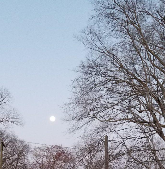 Moon Image Seven