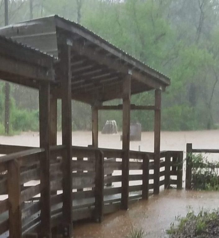 Rain Storm Image Five