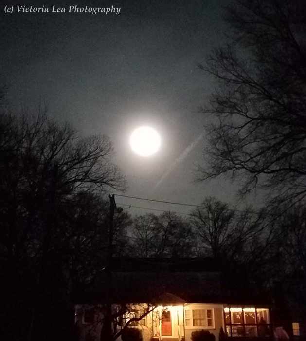 Worm Moon Image One