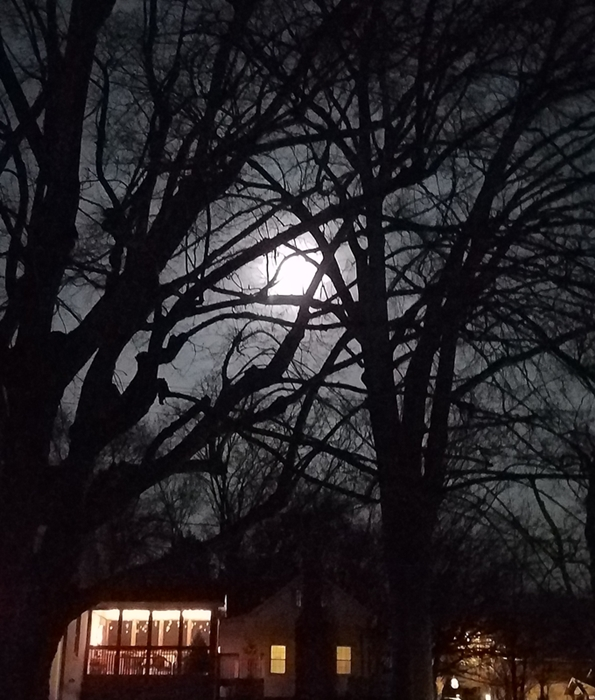 Worm Moon Image Two