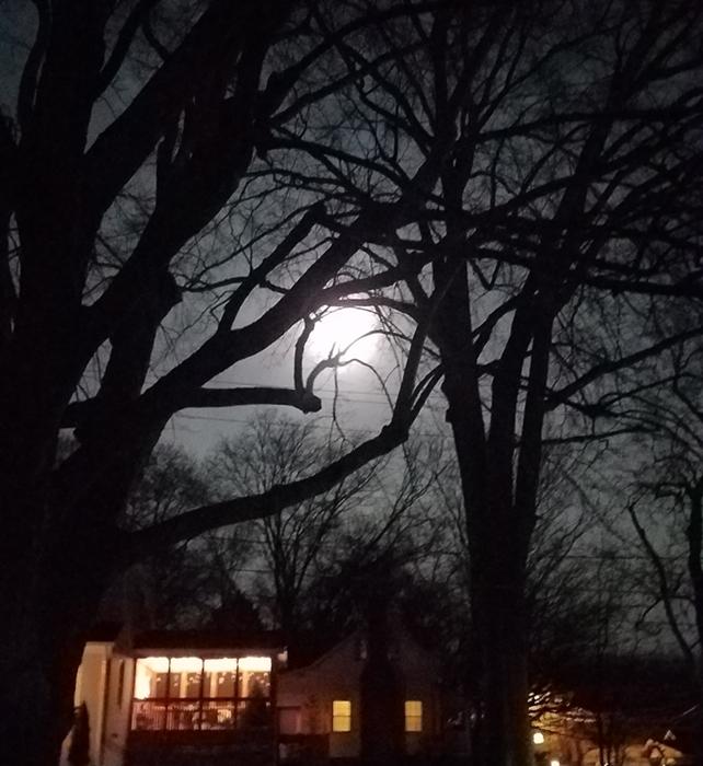 Worm Moon Image Three