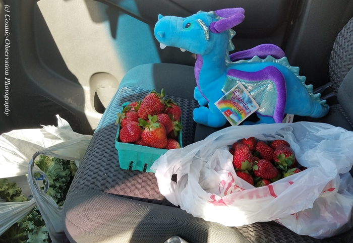Strawberries & Dragon Image