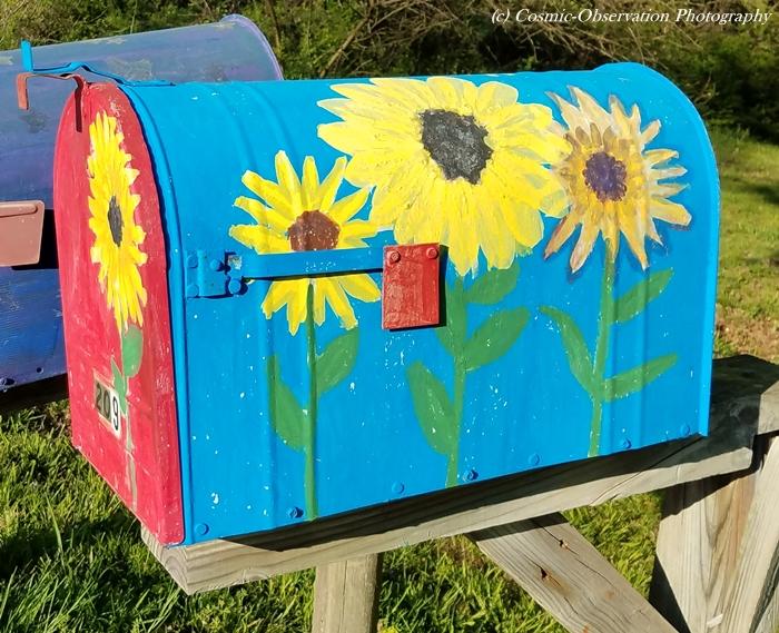 Cute Mailbox Image