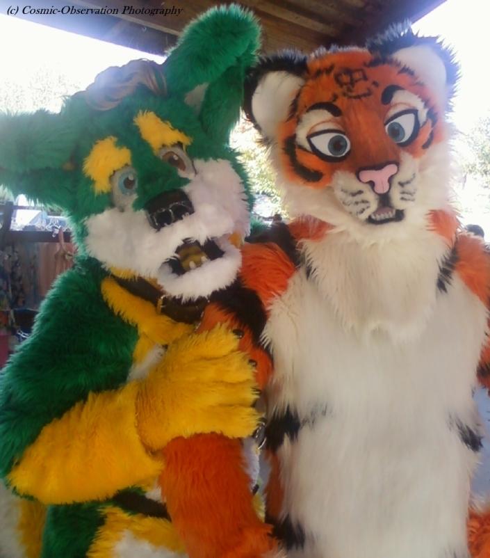 Dog & Tiger Image Two