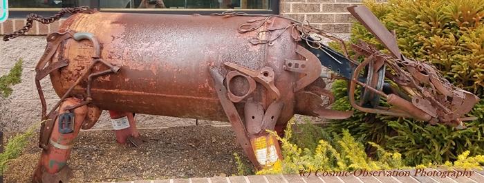Metal Pig Image