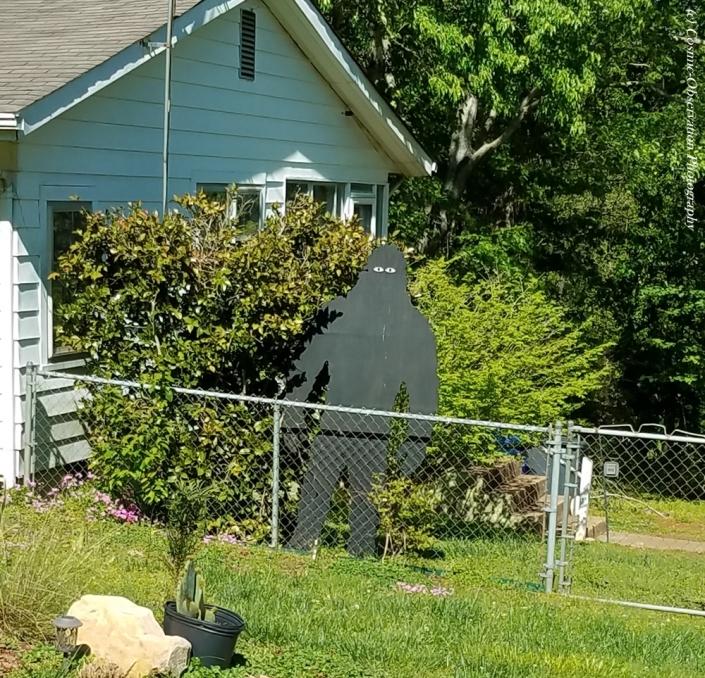 Shadow Man Image