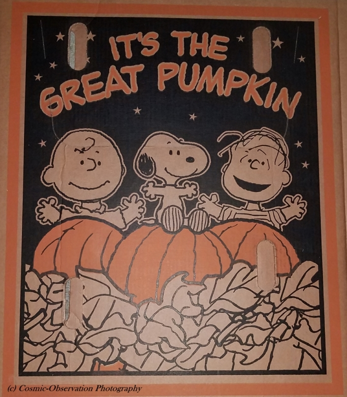 Great Pumpkin Image Four