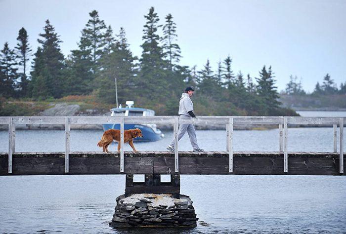 Bridge To The House IMDb & Amazon Image Two