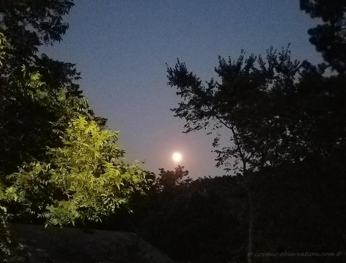 Full Buck Moon 2021 Image