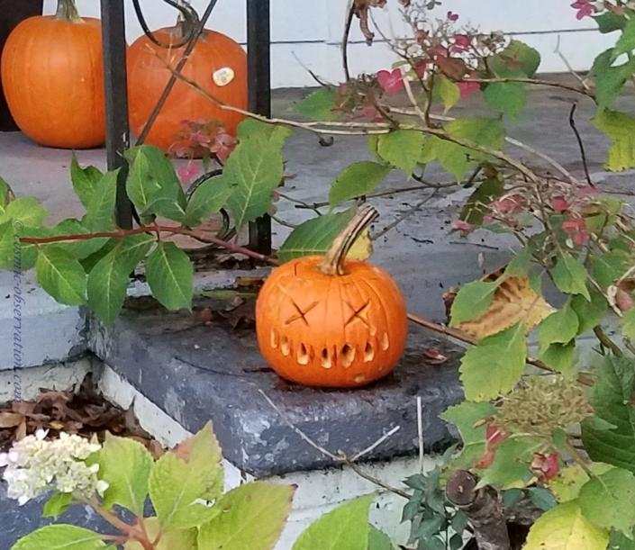 Death Pumpkin Image Three